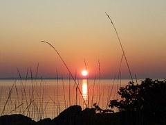 sunrise-80594__180[1]