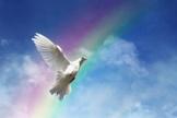 Freedom, peace and spirituality